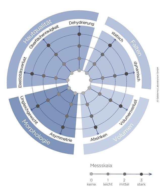 harmony-index-galderma-kreisdiagramm